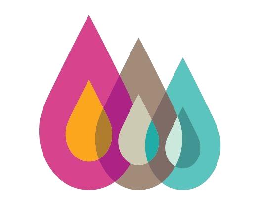 hs logo 2018